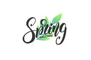 Spring. Script lettering Spring and fresh leaves. Card for seasonal promo, sale etc