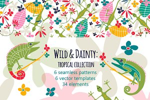 Wild and Dainty Tropical Collection