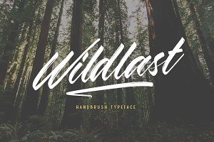 Wildlast Handbrush Typeface