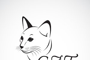Vector of a cat head. Pet. Animal.