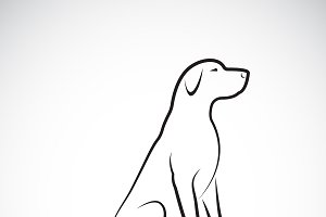 Vector of a labrador retriever dog.