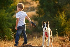 Little boy is walking with a dog