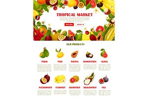 Vector web template exotic fresh tropical fruits