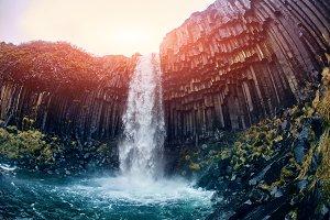 Svartifoss Black Fall , Skaftafell, Iceland.
