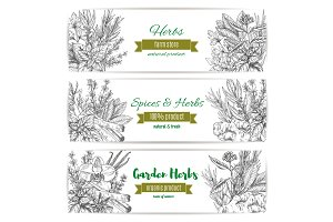 Garden herbs and spices banner for food design