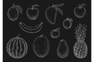 Vector chalk sketch tropical exotic garden fruits
