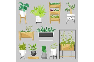 Plants in flowerpots vector potted houseplants indoor botanic cactuses aloe for house decoration with floral collection of botanical garden illustration isolated on white background