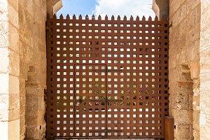 Ancient brown door.