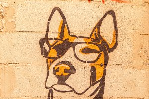 Graffiti dog.