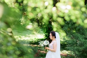 Beautiful bride in a tender dress