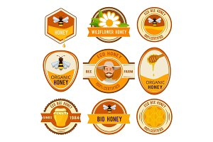 Set labels for honey. Vector template with place for your text