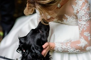 Stunning bride plays with a nice dog