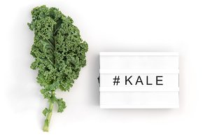 Green kale leaf isolated