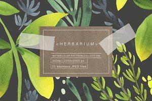 Herbarium. Vol.1