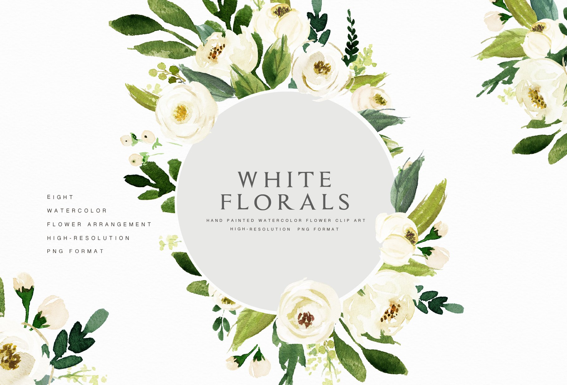 Watercolor White Flower Clip Art Illustrations Creative Market