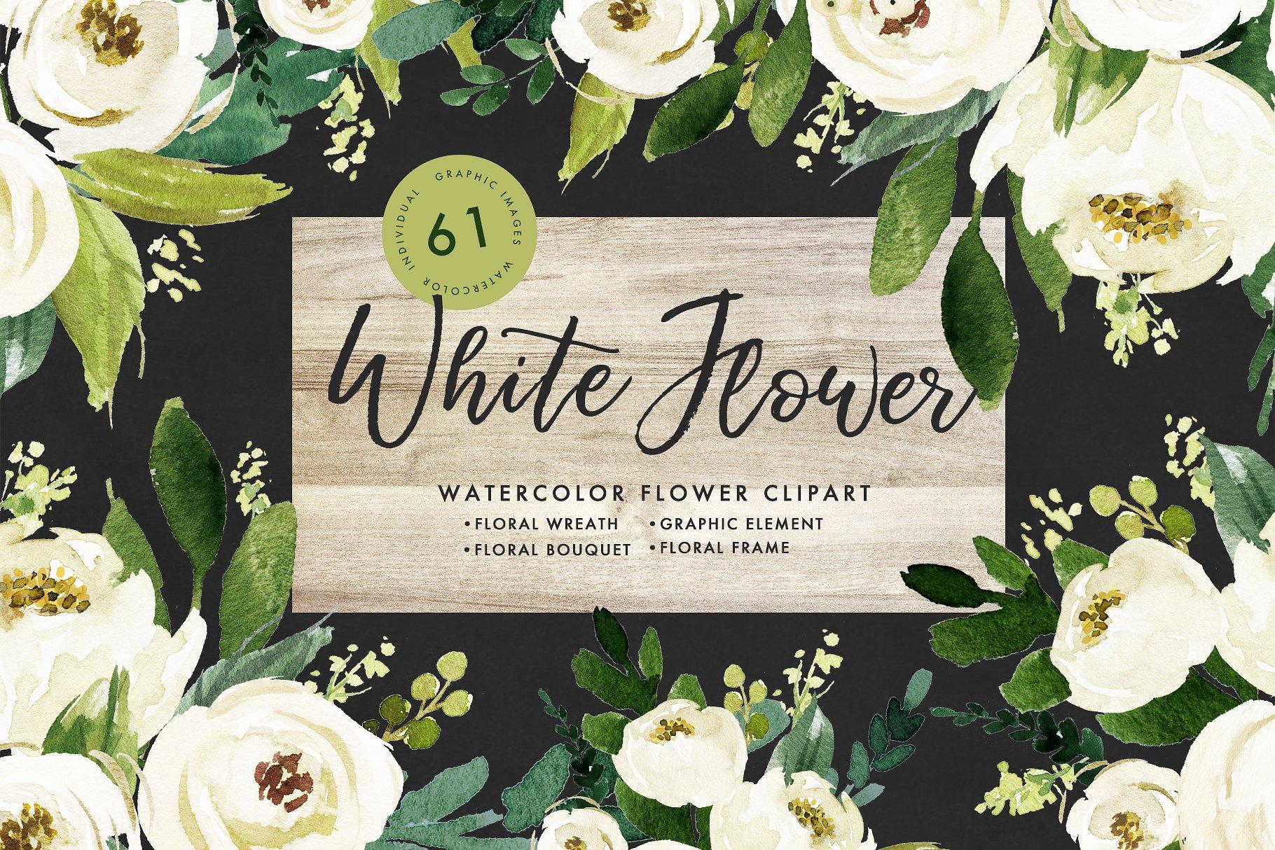Watercolor white flower clip art illustrations creative market pro mightylinksfo
