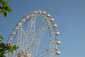 Ferris wheel at an amusement park.