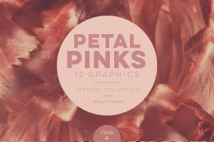 Petal Pink Background Textures