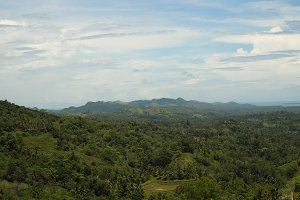 Mountains with tropical forest. Philippines Bohol island.