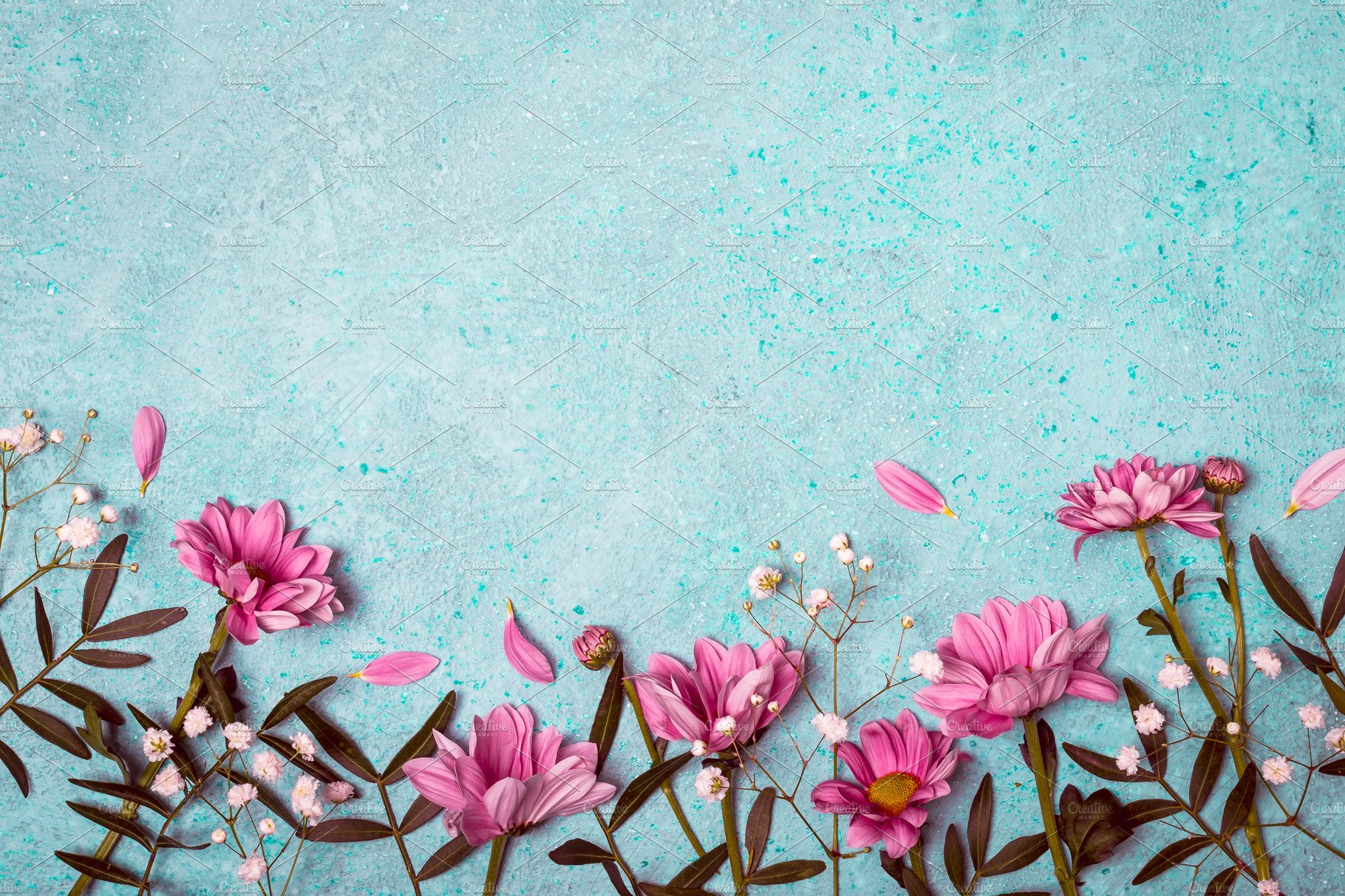Spring Summer Creative Nature Background Pink Flowers Border On
