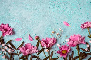 Spring Summer Creative nature background. Pink flowers border
