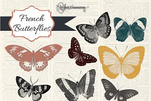 French Butterfly Clipart