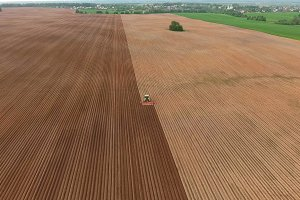 Farmer seeding, sowing crops at field.