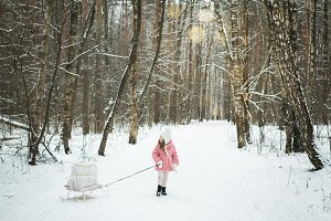 little girl is carrying a sledge