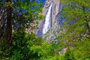 Canvas print of Yosemite falls