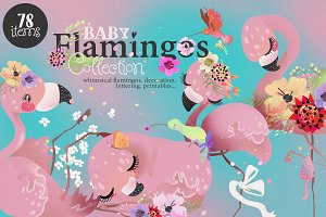 Baby Flamingo Collection