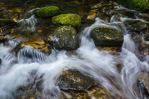 Mountain Stream with Rocks