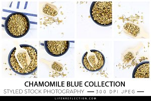 Stock Photography Chamomile Blue