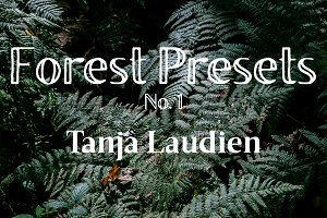 Lightroom Presets - Forest No. 1