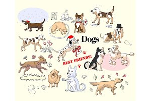 Funny Dogs Sketches Set