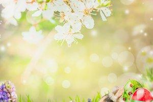 Easter bunny in spring garden
