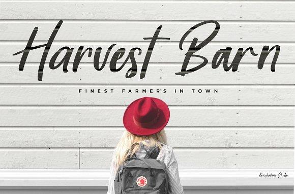 Harvest Barn Farmhouse Casual
