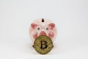 Bitcoin and piggy box