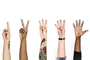 Variation of Hands