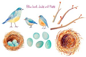 Watercolor Blue Bird Nest Easter Egg