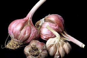 Ripe Dried Garlic
