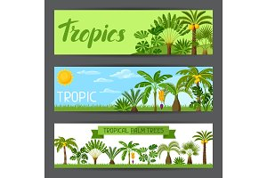 Banners with tropical palm trees. Exotic tropical plants Illustration of jungle nature