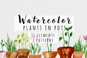 Watercolor plants in pots