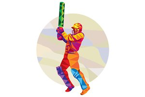 Cricket Player Batsman Batting Low P