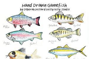 Gamefish Realistic Drawings