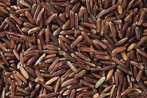 Rice in Macro Shot