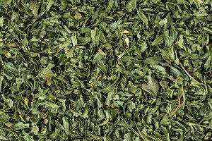Herb in Macro Shot