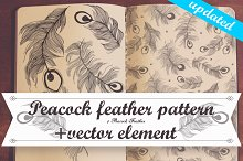 Peacock feather vector/pattern