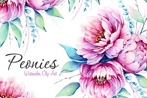 Peonies Watercolor Set