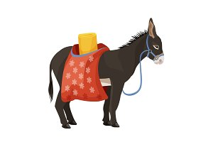 Donkey in harness that carries sacks with sleeping bag