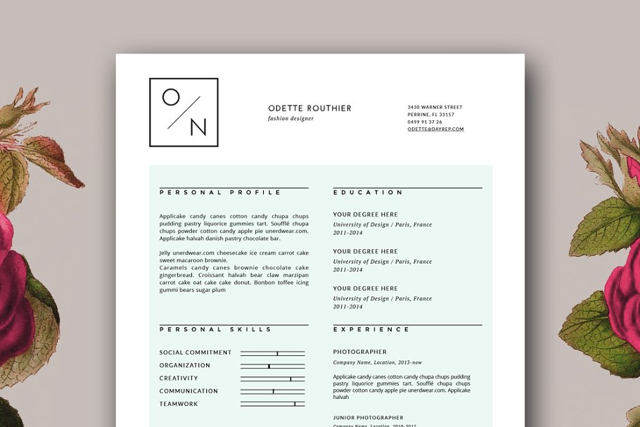 Hipster Resume Template For MS Word Templates Creative Market